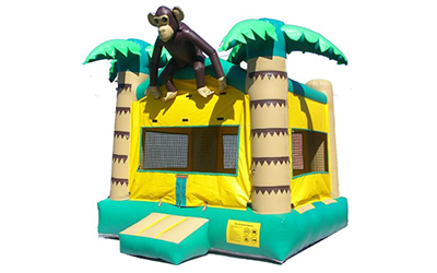 Jungle Monkey Image
