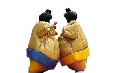 Sumo Wrestling Suits Image